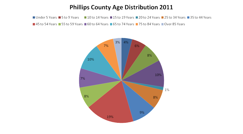PC age distribution chart