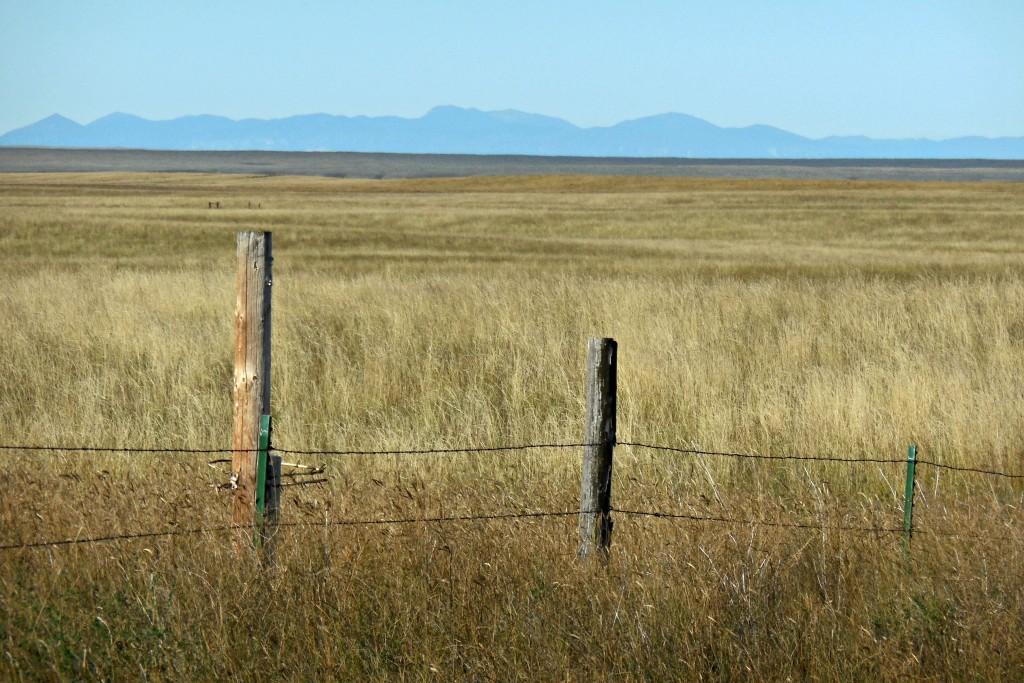 prairielandscape